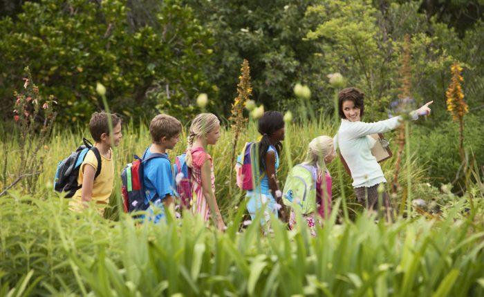 Voyage scolaire enfants nature
